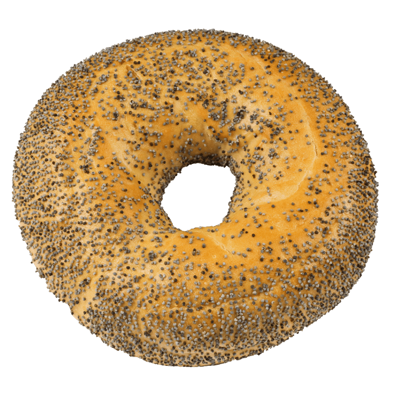 BAGELS POPPY SEEDS